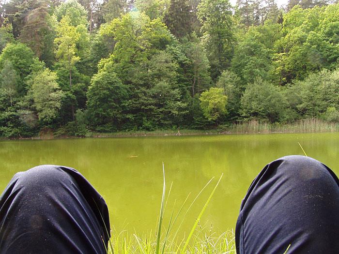 Großer Lattsee